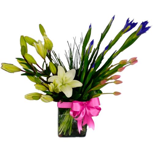 Ballet floral