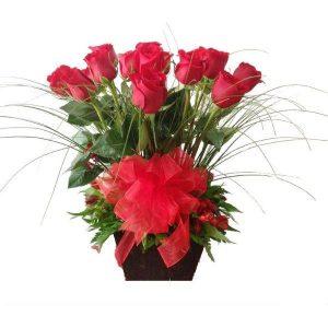 rosas y cebollin 600