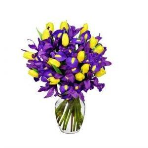 tulipanes e iris