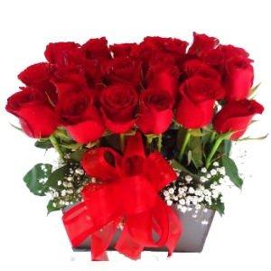 24 Deseos de amor