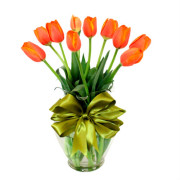 10 tulipanes naranjas