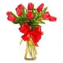10 tulipanes rojos en jarrón