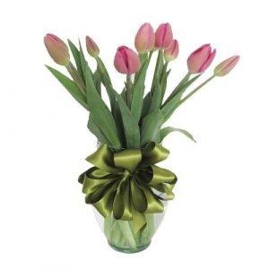 tulipanes fiusha
