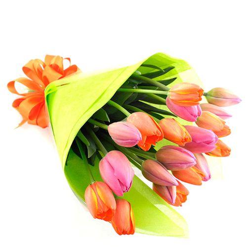 Ramo de 20 tulipanes