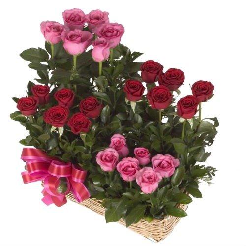 24 Rosas en canasta cuadrada