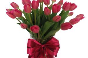 30 tulipanes en jarròn